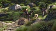 Lionking2019-animationscreencaps.com-6558