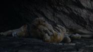 Lionking2019-animationscreencaps.com-1234