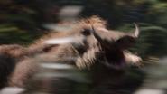 Lionking2019-animationscreencaps.com-9023