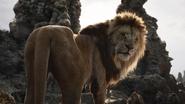 Lionking2019-animationscreencaps.com-3404