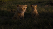 Lionking2019-animationscreencaps.com-3537