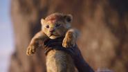 Lionking2019-animationscreencaps.com-374