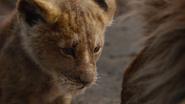 Lionking2019-animationscreencaps.com-5254