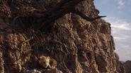 Lionking2019-animationscreencaps.com-5643