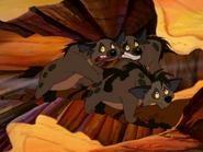 CTAY hyenas33