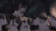 Janja and gang