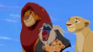 Lion-king2-disneyscreencaps.com-380