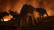 Lionking2019-animationscreencaps.com-11762
