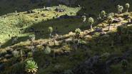 Lionking2019-animationscreencaps.com-6546