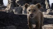 Lionking2019-animationscreencaps.com-2984
