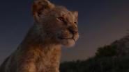 Lionking2019-animationscreencaps.com-3589