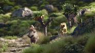 Lionking2019-animationscreencaps.com-6560