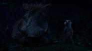Lionking2019-animationscreencaps.com-8397