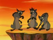 CTAY hyenas15