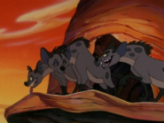 CTAY hyenas6