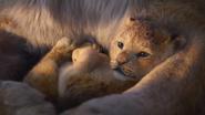 Lionking2019-animationscreencaps.com-298