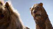 Lionking2019-animationscreencaps.com-5045