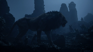 Lionking2019-animationscreencaps.com-4169