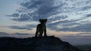 Lionking2019-animationscreencaps.com-1187