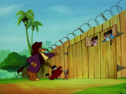 YGJTC Timon Pumbaa lion & Teds