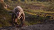 Lionking2019-animationscreencaps.com-250