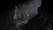 Lionking2019-animationscreencaps.com-2969