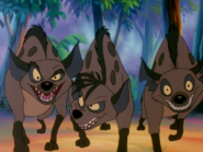 BTB hyenas20