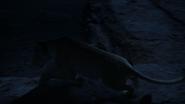 Lionking2019-animationscreencaps.com-7546