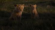 Lionking2019-animationscreencaps.com-3502