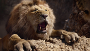 Lionking2019-animationscreencaps.com-5041