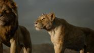 Lionking2019-animationscreencaps.com-10680