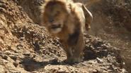 Lionking2019-animationscreencaps.com-4810