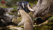 Lionking2019-animationscreencaps.com-6834