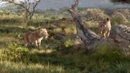 Lionking2019-animationscreencaps.com-2136