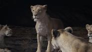 Lionking2019-animationscreencaps.com-7320