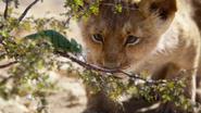 Lionking2019-animationscreencaps.com-4541