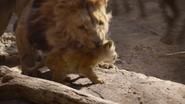 Lionking2019-animationscreencaps.com-4911