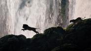 Lionking2019-animationscreencaps.com-9544