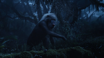 Lionking2019-animationscreencaps.com-10043
