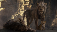 Lionking2019-animationscreencaps.com-5365