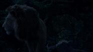 Lionking2019-animationscreencaps.com-8355