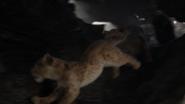 Lionking2019-animationscreencaps.com-3210