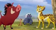 Cheetahfamily