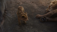 Lionking2019-animationscreencaps.com-5353