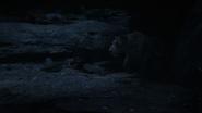 Lionking2019-animationscreencaps.com-7566