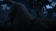 Lionking2019-animationscreencaps.com-10010