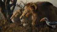 Lionking2019-animationscreencaps.com-10893