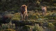 Lionking2019-animationscreencaps.com-9746