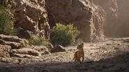 Lionking2019-animationscreencaps.com-5131