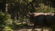 Lionking2019-animationscreencaps.com-9081